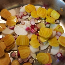 beets-radishes-and-sweet-turnips-250x250